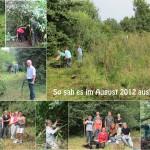 2012_0822_Schulgarten2-72