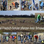 2016_0216_Collage_Pflanztag1_RobertHeuer-72