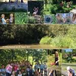 Schulgarten_2016_0825-72